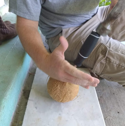 Man with hammer and coconut