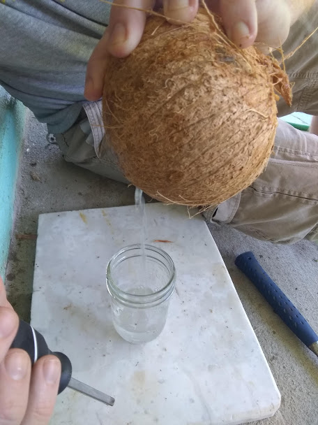 coconut water pouring out of coconut